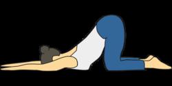 Thumb rehasport bild